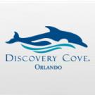 Discovery Cove Day Resort - 1 Dia - Sem Nado